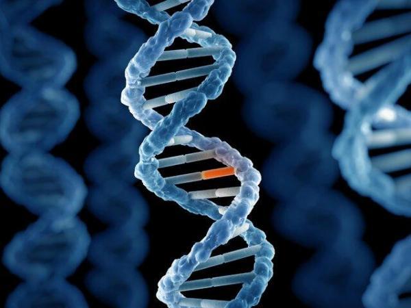 آخرین شرایط بانک اطلاعات ژنتیک مجرمان