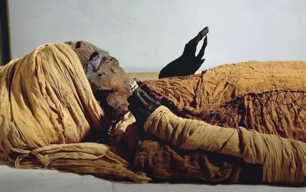 راز مرگ فرعون مصری؛ تائو دوم اعدام شد