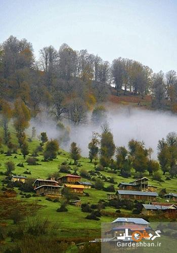 سیلوانا ؛ یکی از 19 منطقه دنیا که اکسیژن خالص دارد، عکس